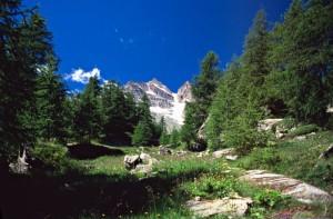 Italiani e ambiente, virtuosi ma non sempre