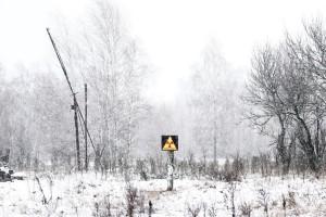 Chernobyl, il deserto rinasce
