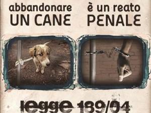 Contro Abbandono Animali