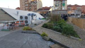 A Torino nasce la nuova Rete di orti urbani