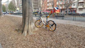 Bike sharing, la città su due ruote