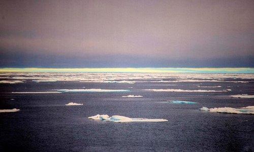 Se la plastica arriva al Polo Nord