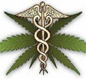 Il primo laboratorio universitario dedicato alla cannabis