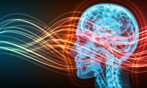 Verso il 5G, onde elettromagnetiche ed effetti sulla salute