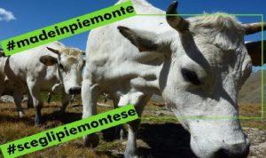 Più #madeinpiemonte per tutelare l'agroalimentare piemontese