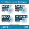 Una lunga call veterinaria sul Covid19 e le zoonosi  parte 1