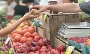 Mangiasano, per un futuro più sostenibile