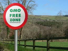 No OGM in Agricoltura