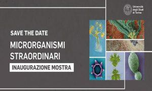 Microrganismi straordinari all'Orto Botanico di Torino